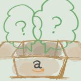 Amazonで注文した商品が2つ届いた